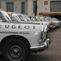 Peugeot - Gran Premio Argentino Historico