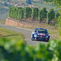 WRC - Alemania 2015 - Dia 1 - Sebastien Ogier - VW Polo R