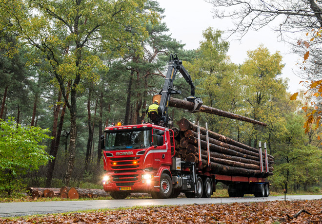 Scania Forestal