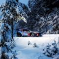 WRC - Suecia 2017 - Dia 2 - Thierry Neuville - Hyundai i20 WRC