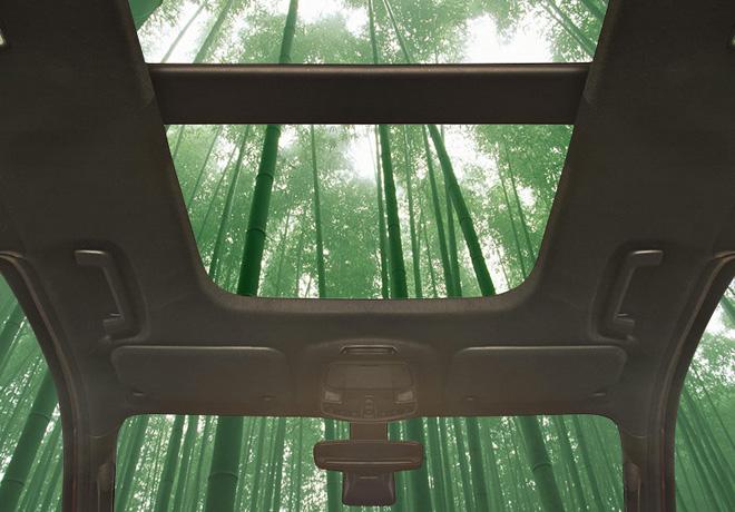 Ford investiga la utilización del bambú para fabricar componentes de vehículos.