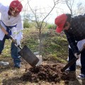 Toyota presenta la edicion de Conciencia Ambiental en Escuelas Primarias para Concesionarios