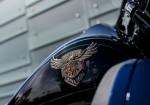 Harley-Davidson Ultra Limited 115 Aniversario 3